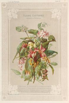 Le Livre des Parfums. Préface d'Alphonse Karr.